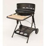 barbecue charbon avec ventilateur